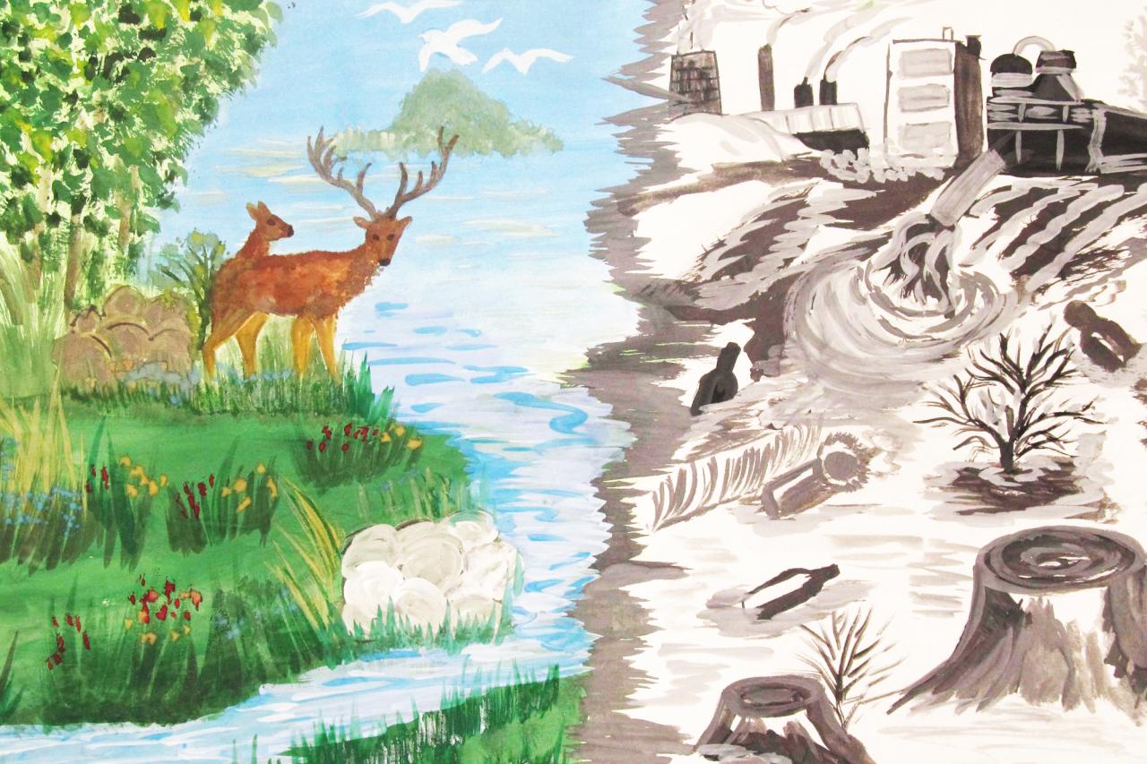 Картинки об экологии 3 класс, днем рождения